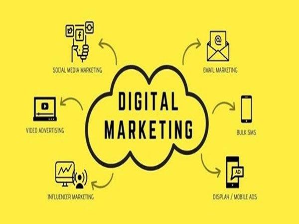 Lý do nên chọn công ty On Digital là gì?